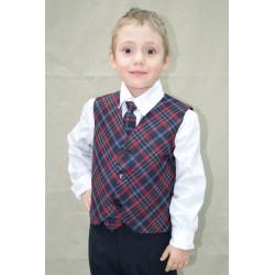 Cravata carouri bleumarin...